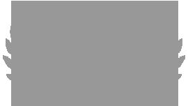 award-logo-2-4